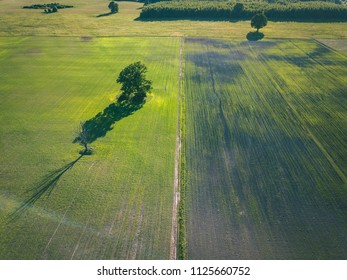 drone image. aerial view of countryside road network, cultivated fields and forest textures. latvia - vintage retro look