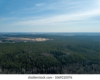 drone image. aerial view of frozen riverbank in spring forest, Gauja, Latvia
