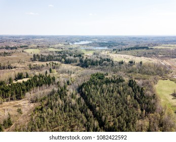 drone image. aerial view of rural area with fields and forests in sunny spring day. latvia