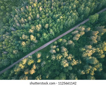 drone image. gravel road surrounded by pine forest from above. summer countryside in Latvia - vintage retro look