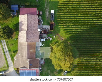 Drone over wine yard in the medoc (Bordeaux)