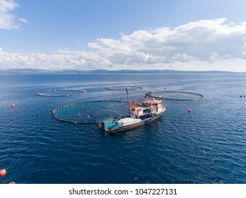 Drone photo of a fishing boat in an open sea fish farm