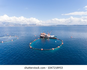 Drone photo of a trawler in an open sea fish farm