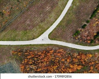 Drone photos of the park pathway fork