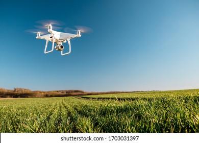 copo cuádruple drone en campo de maíz verde