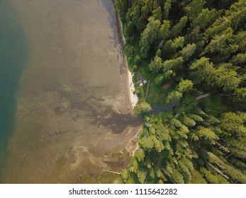Drone Shot of Beach and Forest at Waldo Lake