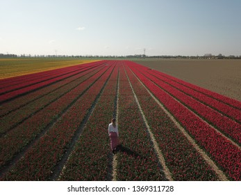 Drone shot of a girl in the flowerfields in the Netherlands