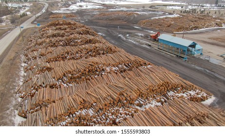 DRONE: Spectacular shot of large logs stacked into massive piles by a sawmill. Empty trails lead past a sawmill in middle of a valley known for its logging industry. Piles of chopped down tree trunks.