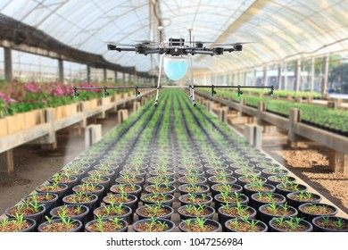 Drone spray pesticide at plant nursery of green house