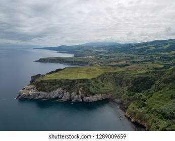 Drone view of amazing Azores landscape. Tea farm in the green fields on the north coast of San Miguel island, Azores, Portugal. Bird eye view, aerial panoramic view.