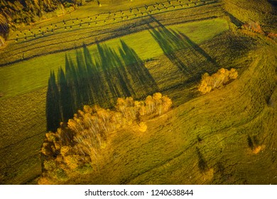 Drone view of autumn meadow and forest. Aerial nature shot