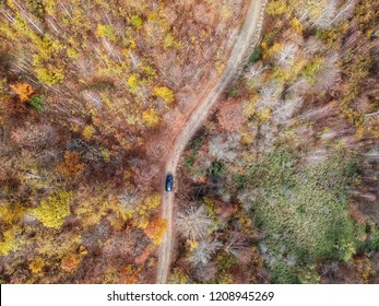 Drone view of a car off road in a beautiful colorful autumn day