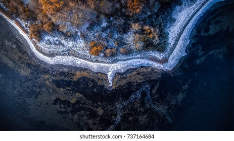 Drone winter image of frozen edge of forest.