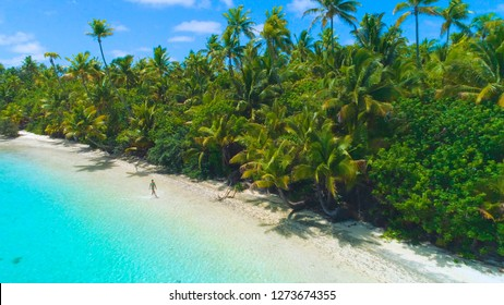 eb80a6b6c6c8 DRONE  Young female traveler walks along the white sand shore of an exotic  palm tree