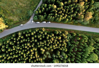 Dronepicture of policecars and forest.