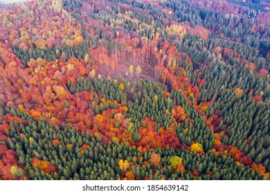 droneview, upside down,  forest trees in autumn, valley Remstal in Germany