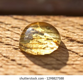 A drop of honey accidentally fell on the surface of a wooden plank.