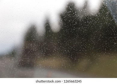 Droplets of water on a windshield or windscreen, with blurry forest trees in the distance.