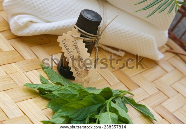A dropper bottle of peppermint essential oil. Fresh peppermint leaves in front view