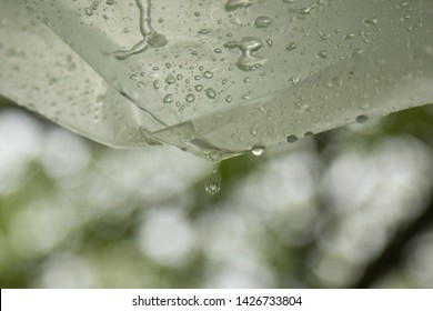 Water Beads On Fabric Images, Stock Photos & Vectors | Shutterstock