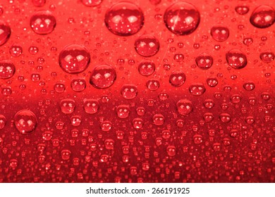 Drops of water on a color background. Red. Shallow depth of field.