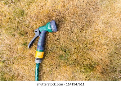 Drought Conditions - Hosepipe and parched grass