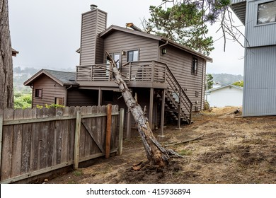 Drought and gravity causes a dead pot pine tree to fall on this seaside house and causes severe major damage to the structure, on the Big Sur coastline, California Central Coast, near Cambria, CA.