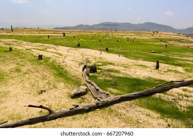 Drought from human deforestation.