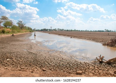 Drought and summer season, Hot landscape. Close up image of cracked dry land.