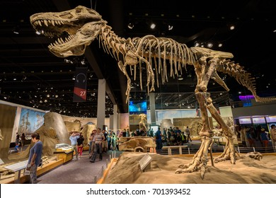 DRUMHELLER, CANADA - JULY 6, 2017 : Visitors and tourists enjoy dinosaur exhibits at the Royal Tyrrel Museum of Palaeontology in Alberta.