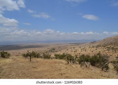 Dry african savanna landscape