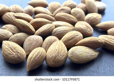 Dry apricot kernel.Alternative medicine.Cancer prevention .