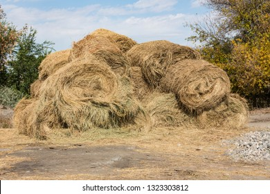 Dry baled hay bales stack, rural countryside straw background. Hay bales straw storage shed full of bales hay on agricultural farm. Rural land cowshed farm with hay straw bales stack under old shed