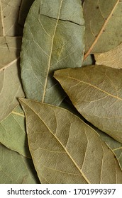Dry bay leaf closeup background. Macro texture of mediterranian aromatic spice seasoning. Raw Indian spice bay leaves wallpaper.