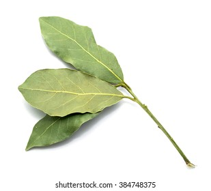 dry bay leaves on white background, seasoning