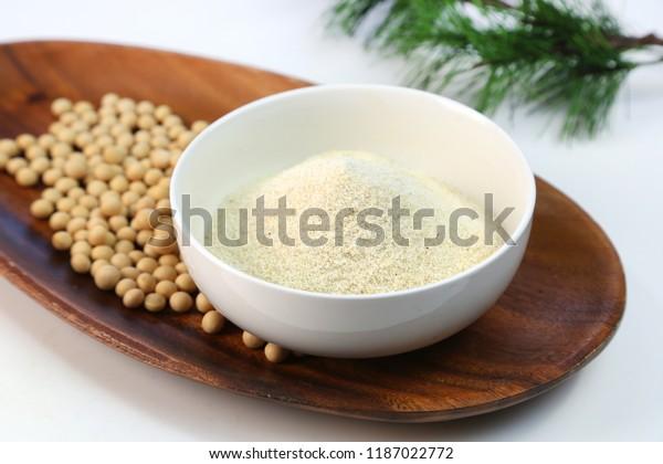 Dry bean curd powder.It is called [okara powder] in Japan.
