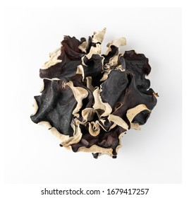 Dry black fungus, tree ear or wood ear mushroom isolated on white background. Dried auricularia polytricha also known as cloud ear, black mushroom, jelly fungus or cloud ear fungus