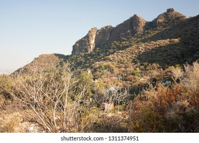 Dry branches with sunset tones and rock formations landscape of a state of Mexico