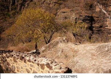 Dry branches that line the side walls of archaeological vestiges in pyramid that date from the year 1153 buried in the chasm of the great hill of the speaker in a state of Mexico