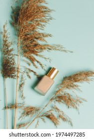 Dry bulrush and nail polish on blue background. Above view