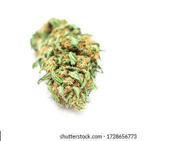 Dry cannabis bud isolated ob white background. Marijuana bud isolated on white background.