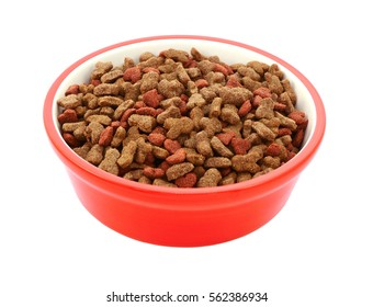 Dry cat biscuits in a red pet food bowl, isolated on a white background