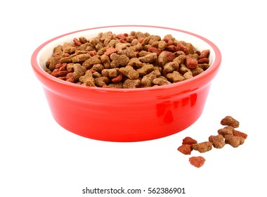 Dry cat food in a red bowl, some biscuits spilled beside, isolated on a white background