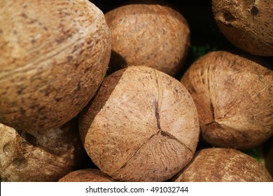 Dry Coconut for produce coconut milk, Dry Coconut peel off for sales marke