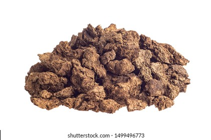 Dry cow dung isolated on white background
