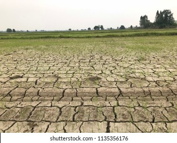 Dry cracked ground after drought