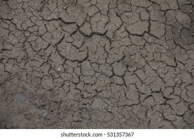 Dry cracked ground texture