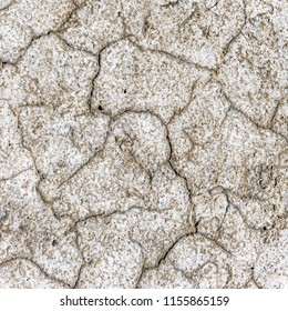 Dry cracks on a salt marsh in Lower Saxony, Germany, with white salt precipitates of sodium chloride and calcium chloride.