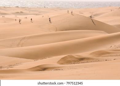 Dry Desert Landscape in Maspalomas Gran Canaria Canary Islands