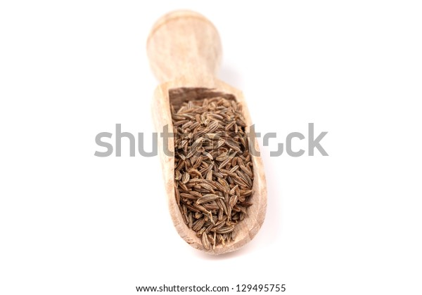 dry dill on a white background